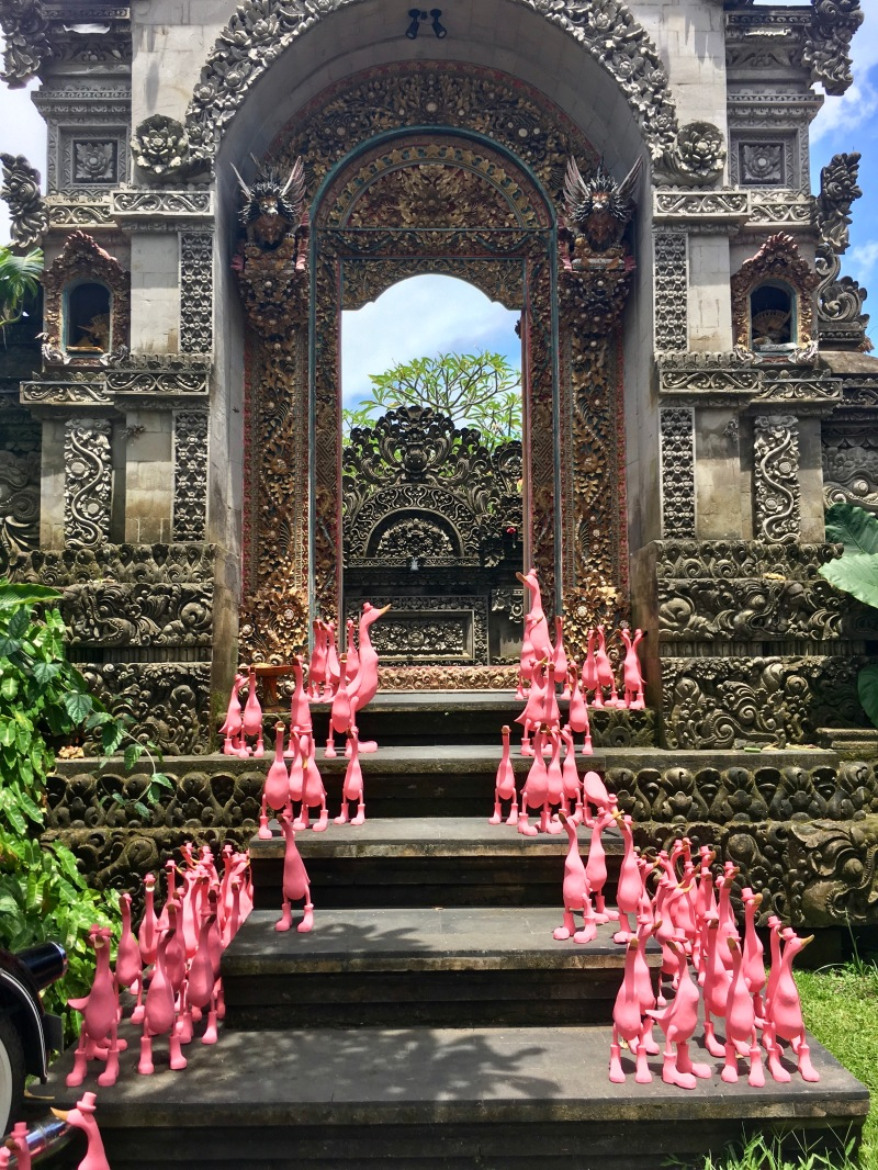 ubud temple pink duck