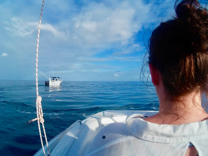 boat trip to Tamarin bay, mauritius